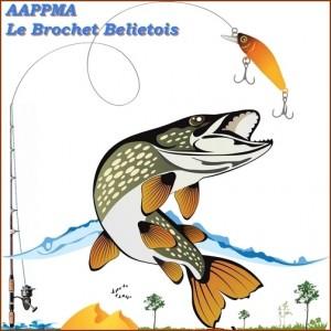 Brochet Belietois
